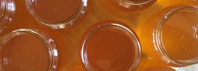 Le miel de Montdoyen